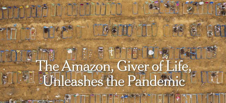 """""""El Amazonas, hacedor de vida, desata la pandemia"""""""