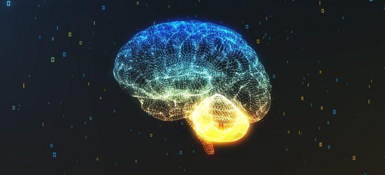 Una única dosis de ayahuasca provoca cambios a largo plazo en dos importantes redes cerebrales