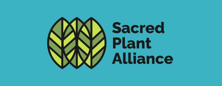 Sacred Plant Alliance: las iglesias visionarias de EE.UU. hacen frente común